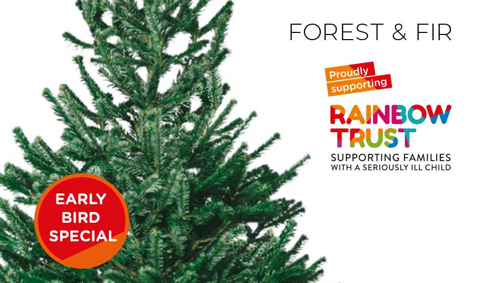 Forest Fir Rainbow Trust Children S Charity