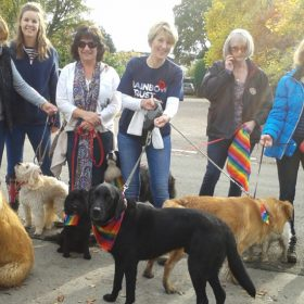 Family Support Worker, Claire, hosts Big Hour Dog Walk